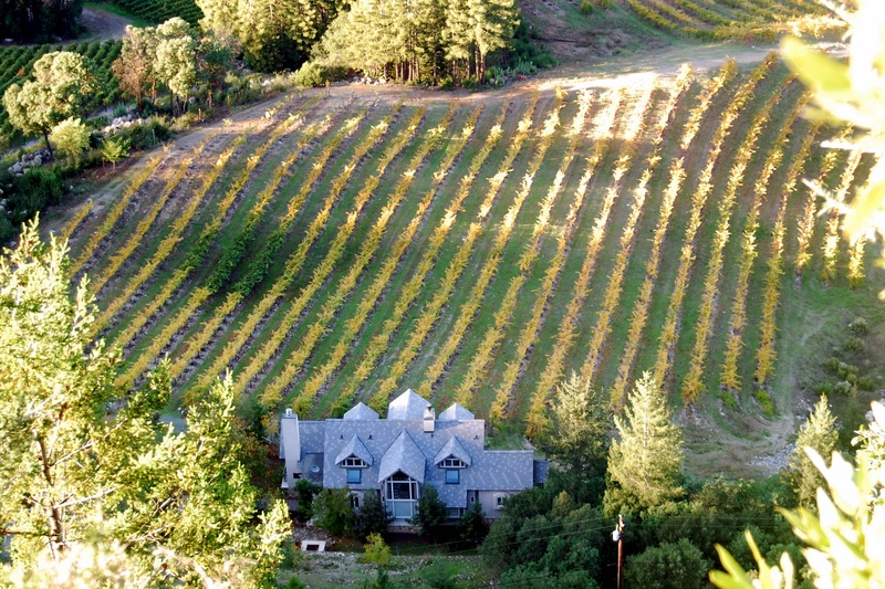 Mt. Veeder Appelation, 3655 Mt. Veeder Road, Napa, Ca, 94559